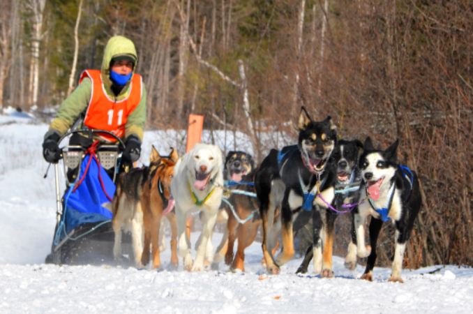 wintersport 10-28