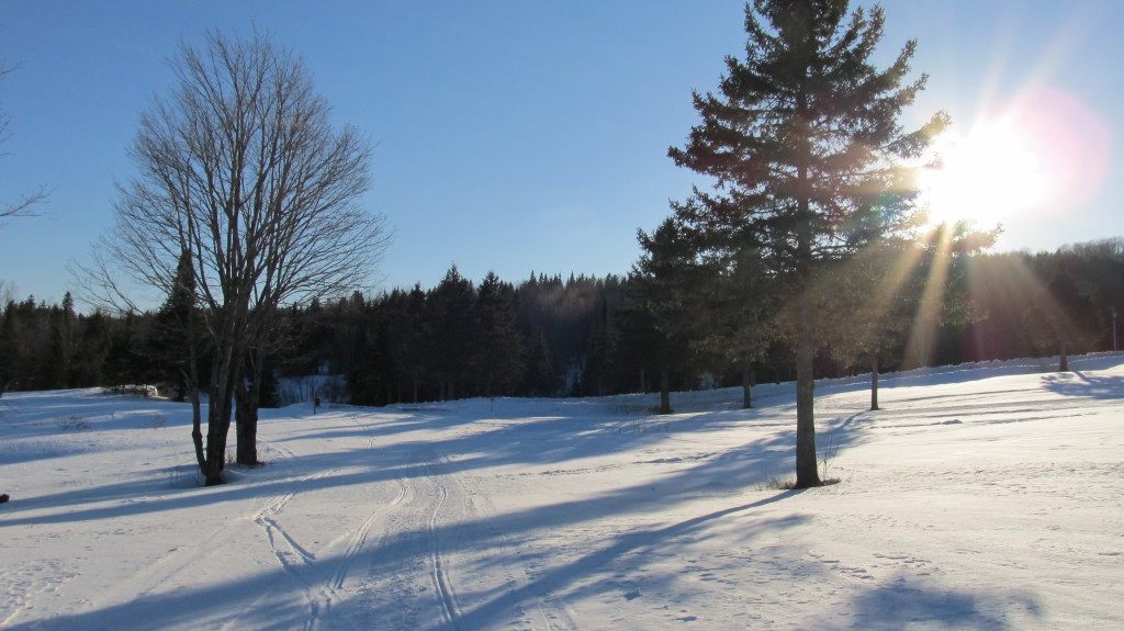 Snowmobile trail #139 in April